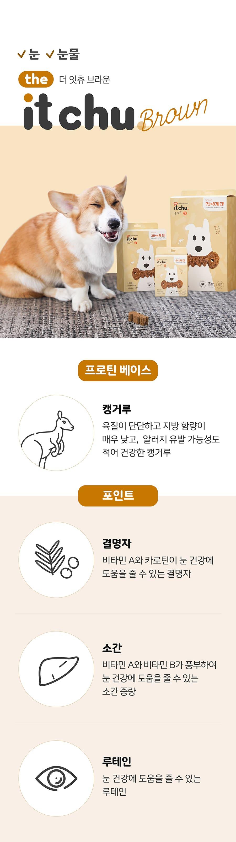 [EVENT] it 더 잇츄 브라운 M (8개입)-상품이미지-18