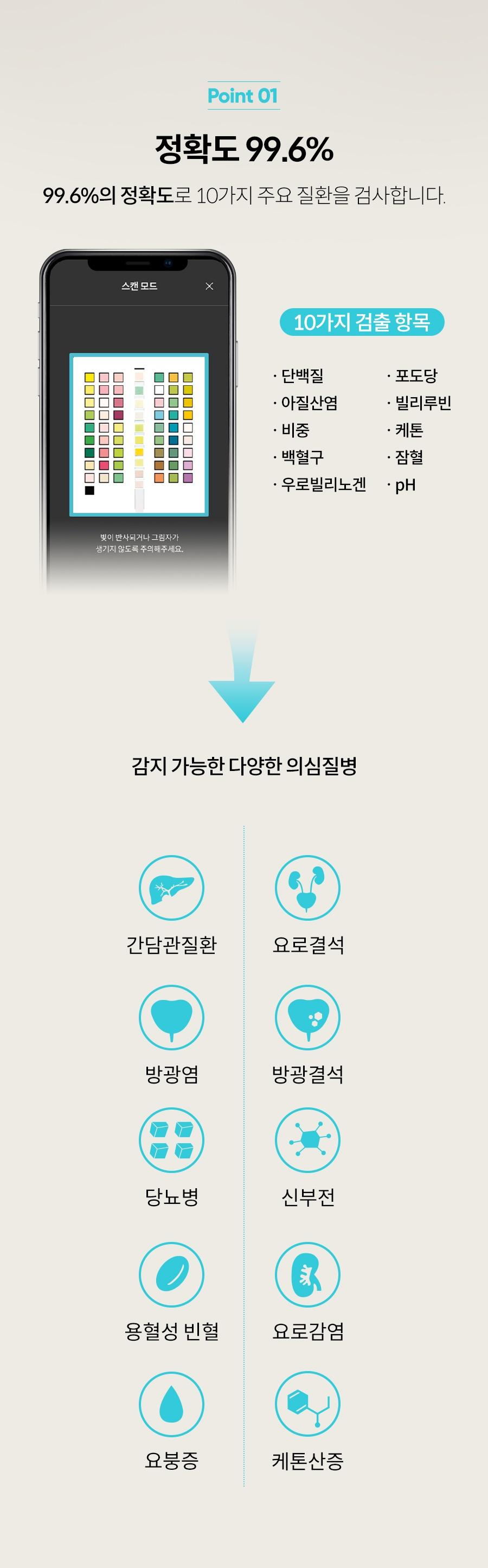 [리뉴얼이벤트] 어헤드 베이직 리뉴얼 출시-상품이미지-4